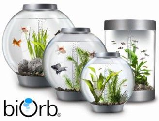 Reef One BiOrb Aquariums come in a variety of shapes, sizes and styles. Whether you choose small, large, tropical or cold water, each aquarium features the same simple, low maintenance filtration system. Made from high quality acrylic which is ten times stronger and clearer than glass, you can be confident with your choice.