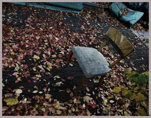 October - Capturing My World
