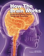 How The Brain Works takes the reader from the physiology of the brain through to its processes – such as what happens in the brain while we sleep – and on to traumas, diseases and psychological conditions. From learning about the blood vessels in the head to what goes wrong when someone has a stroke, from how alcohol affects the brain to diagnosing meningitis, from anorexia nervosa to post natal depression, How The Brain Works expertly explains the processes of the brain.