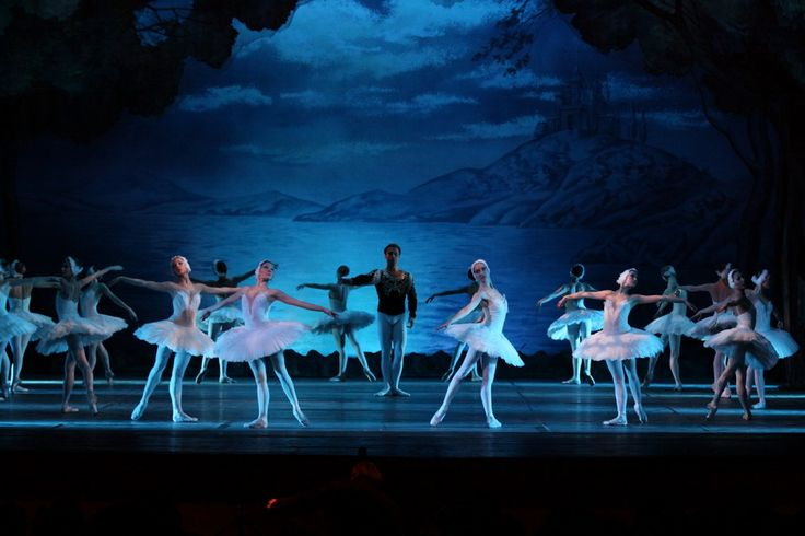 Il Lago dei Cigni @ Teatro Olimpico dal 10 al 14 Dicembre 2014