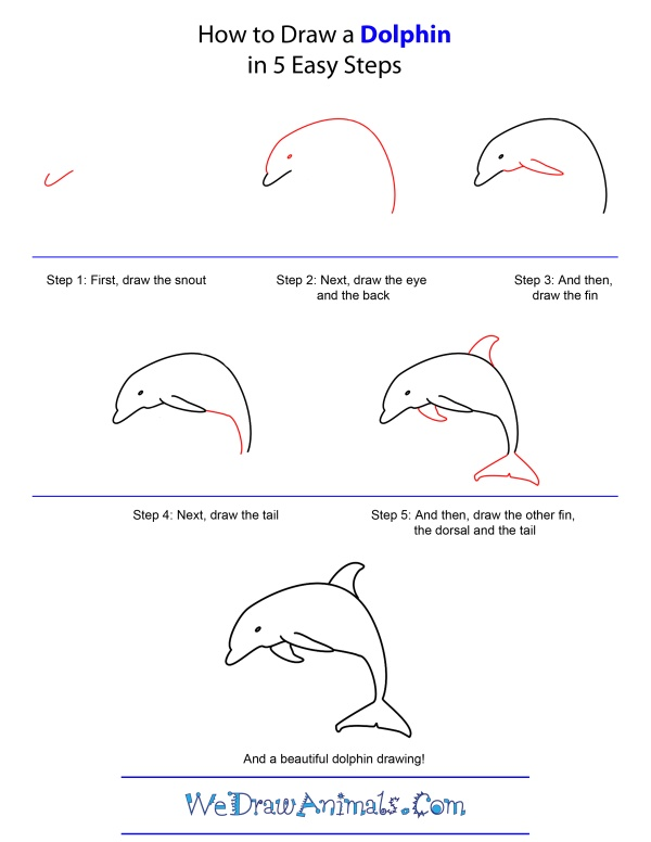 how-to-draw-a-dolphin-step-by-step | Under The Sea ...