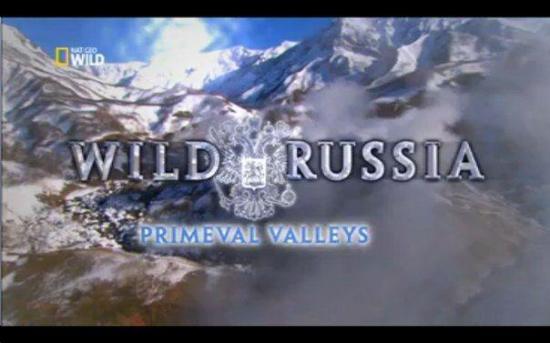 Дикая природа России Смотрите прямо сейчас на канале Nat Geo Wild http://tv.megamoney.biz/