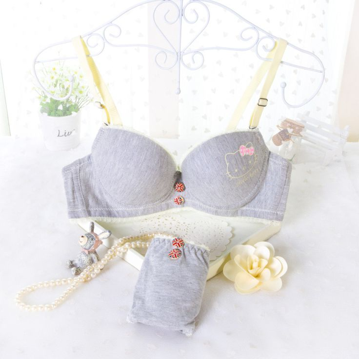 Woman Brand Bra Brief Sets Females Underwear Set Lingerie Gray Women Sexy Push Up Bra and Panties Cat Printed Womens Bra Set -