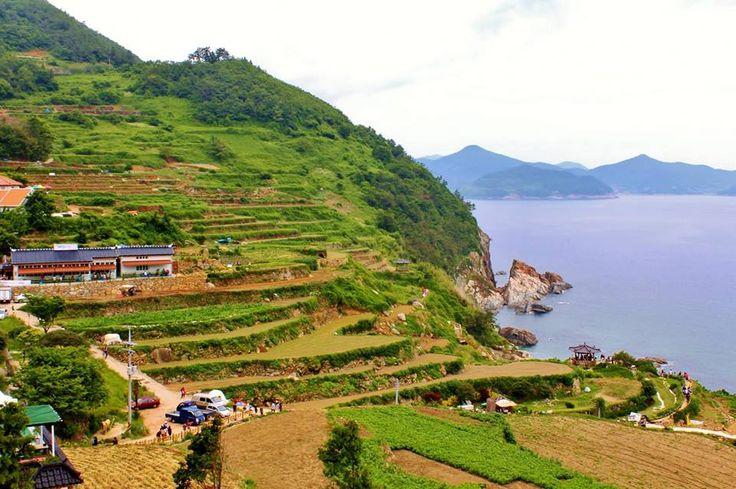 Daraengi Rice Fields of Gacheon Village.