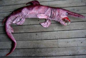 5.- Cómo es la piel del tiburón duende
