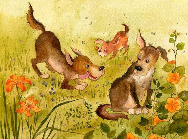 собачья площадка (Виктория Кирдий)