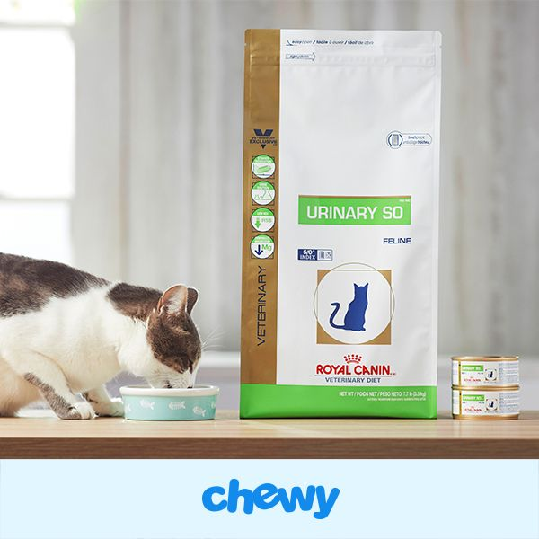 Royal Canin Veterinary Diet Urinary SO Dry Food was