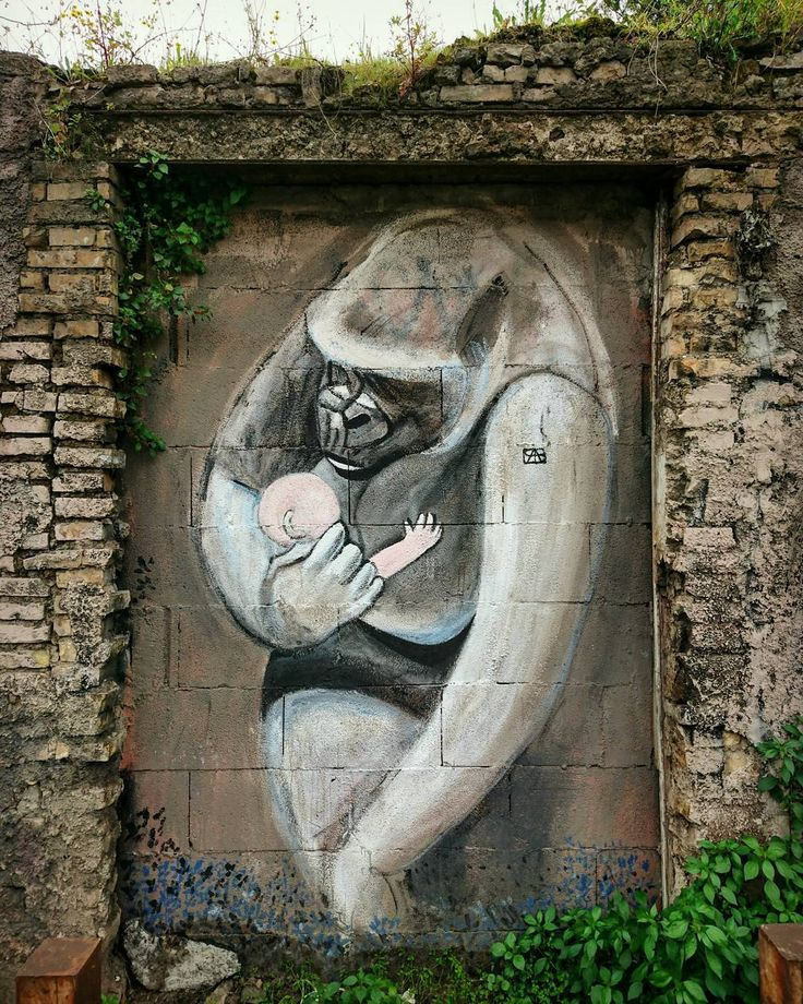 L'amore non fa distinzioni. Di nessun genere. (Le gorille Georges Brassens) #roma #mural #graffiti #streetart #urbanart #love #animal #baby #monkey #wall #art #view #closeup #portrait #wallart #urban #frame #artwork #scenery #instaart #paint #photo #instadaily #instagood #instacool #vsco #picoftheday #photooftheday #instagram #igers by claudio_hutch