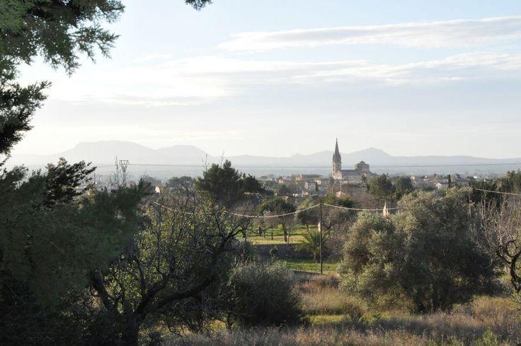 Binissalem, Centrala Mallorca: Finca med stor potensial att renovera i Binissalem