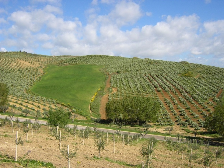 Gigliotto Agritourism_countryside of Piazza Armerina_Sicily