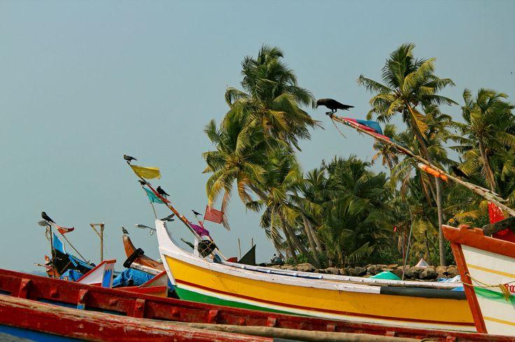 Fishing boats, Cochin
