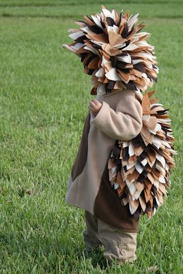 I Hold All The Cards: Hedgehog Costumes