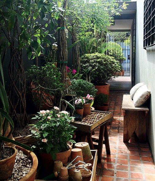 No corredor de seu escritório, com apenas 8,60 m², a paisagista Claudia Muñoz recupera espécies debilitadas. Entre as plantas que fazem rodízio ali, estão orquídeas, cactos, azaleias e rosas. A bancada é feita com blocos de cimento