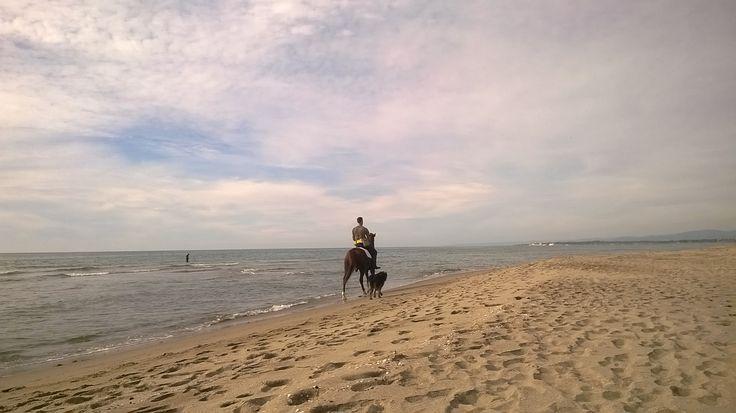 Un cavaliere solitario, o quasi, sulla chiarissima spiaggia di Passoscuro.