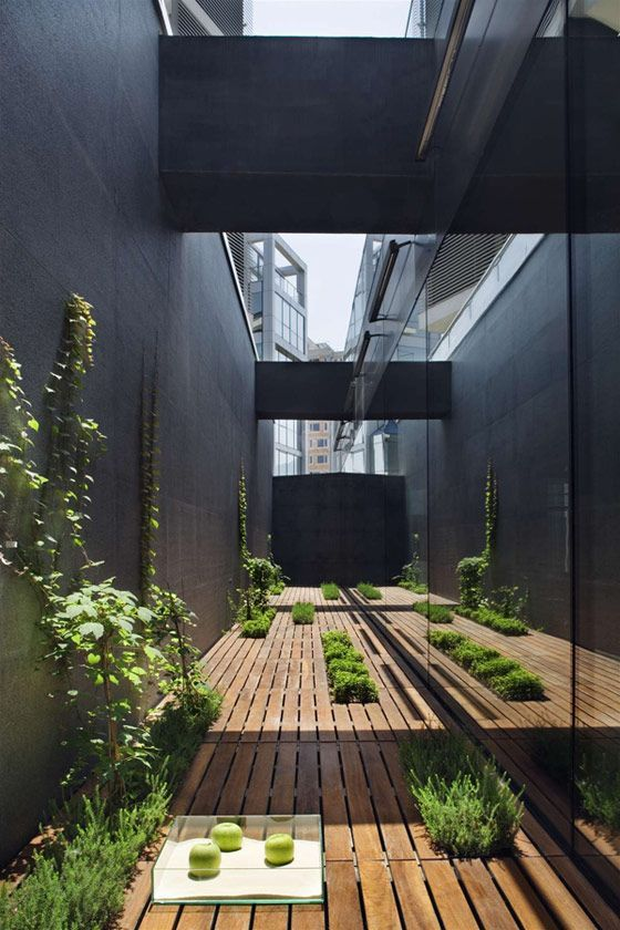 Contemporary, narrow and minimal courtyard space