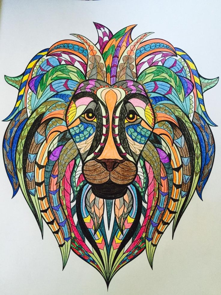 Amazon Adult Coloring Book Stress Relieving Animal Designs 9781941325117