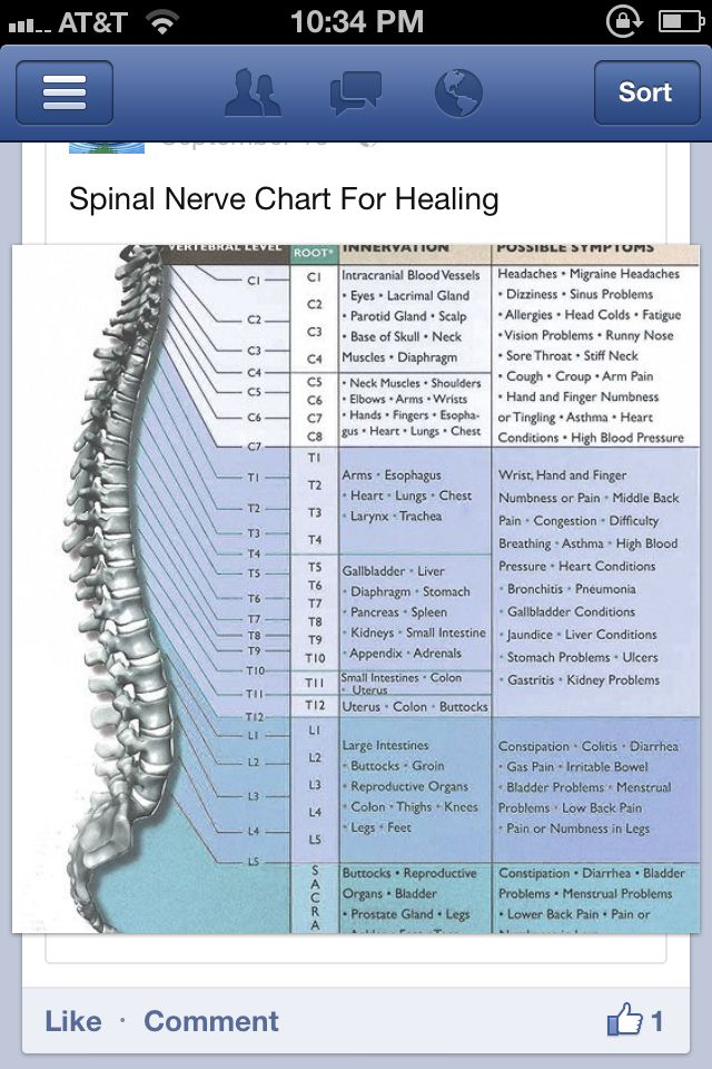 spinal nerve chart for healing