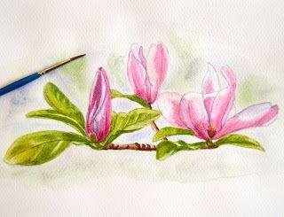 Dipingere su Tessuto:  Watercolor study magnolia  Buon fine sett...