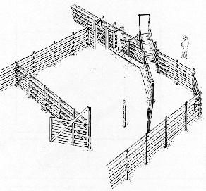 HF This corral and loading area would help when it's time to ...