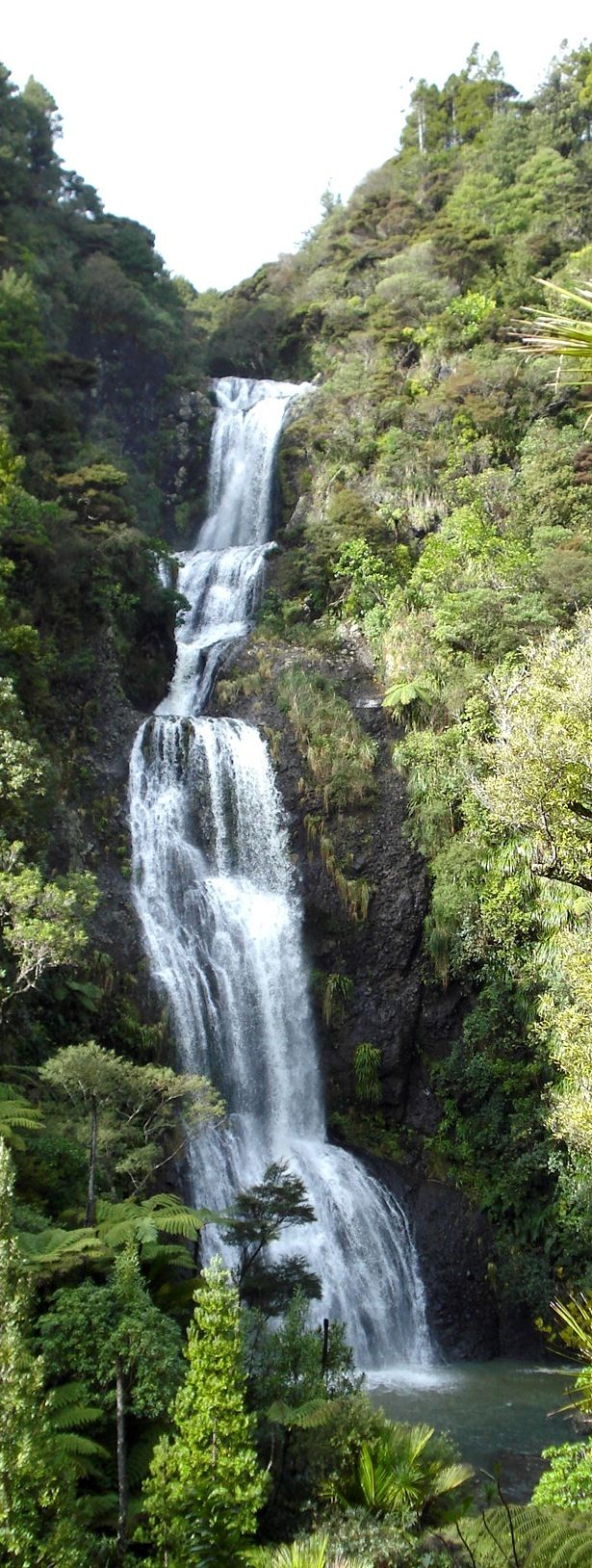 See stunning waterfalls in the Waitakere Ranges, west of Auckland. #newzealand