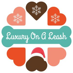 Christmas from luxury on a leash christmas holidays love family