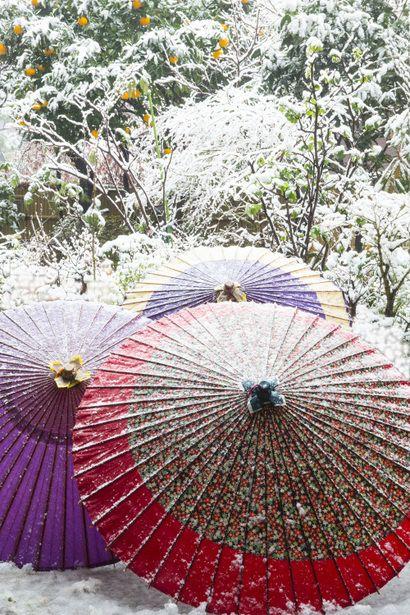 Japanese umbrellas in snow.