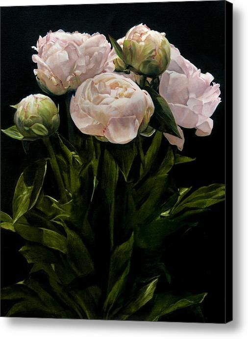 Bouquet Of Peonies Canvas Print / Canvas Art By Thomas Darnell