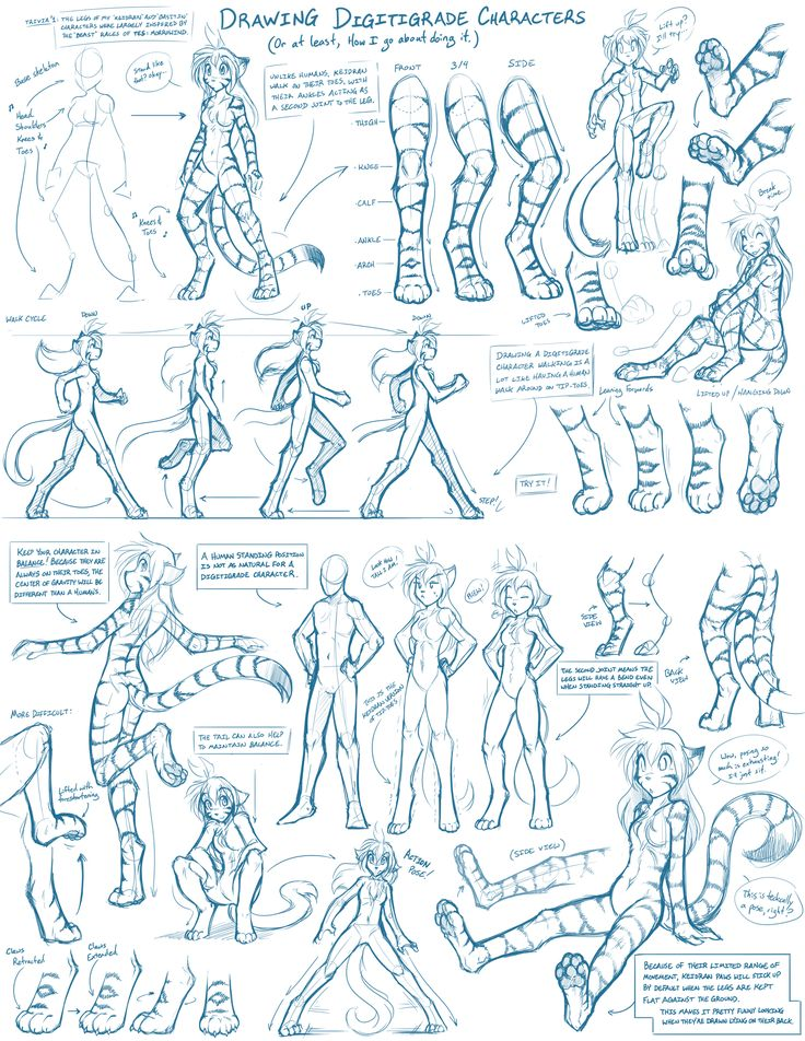 Tkturials - Digitigrade Legs Guide by Twokinds on deviantART
