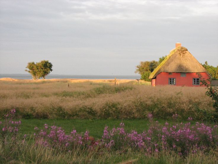 Denmark: view from the summer house