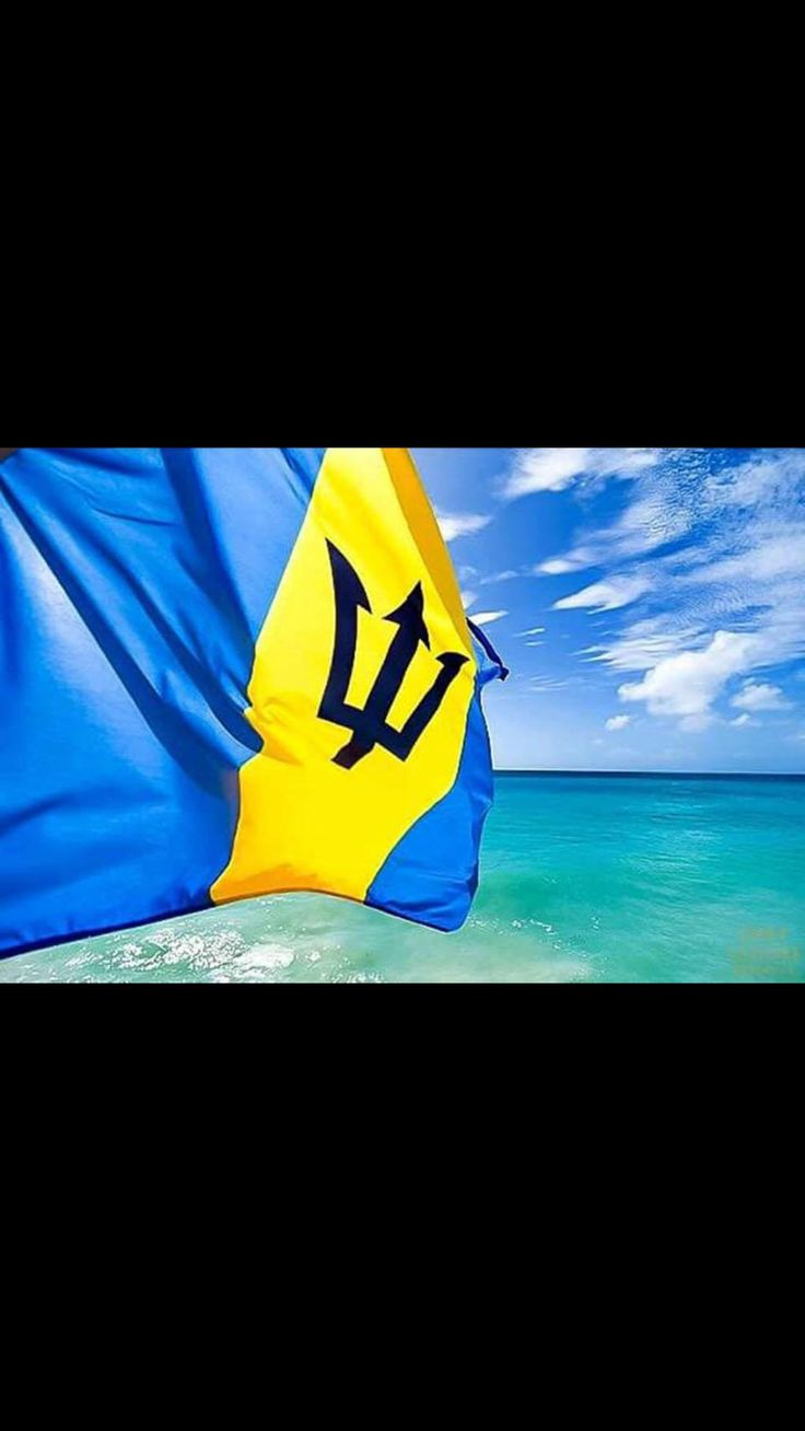 barbadian flag