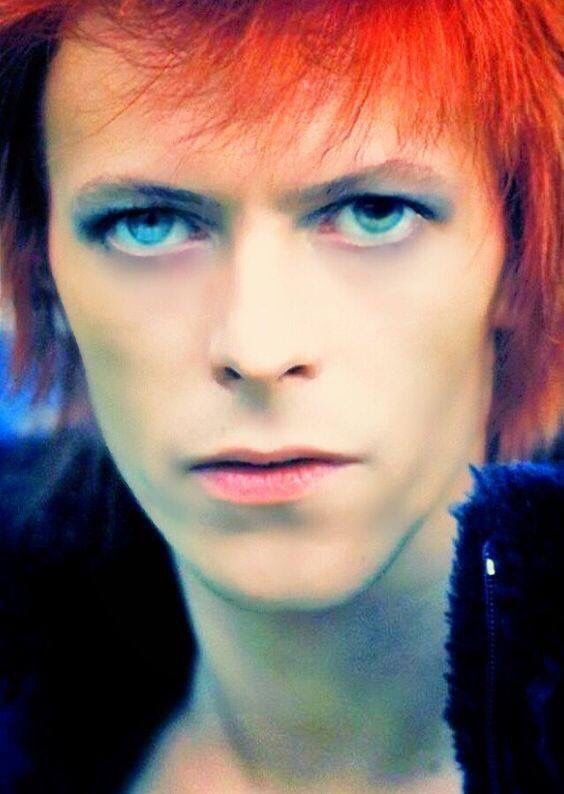 #idampan #idaZiggy #Ziggy #ZiggyStardust #Bowie #DavidBowie #idampan #impProfile #WILST #Aero #OPS I #meant #Hero #Eros #Sweet #Virgin #Watts #am I #saying ? I #meant #Heros #butt not the #Chocolate #Bar #Candy #Transformers #MCU #idaCohen