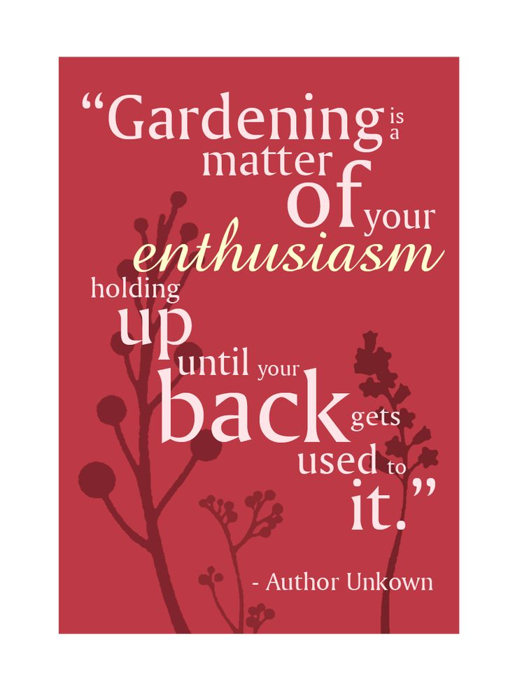 Signs Quotes Delectable Gardening Is A Matter Of Your Enthusiasm Holding Up Until Your