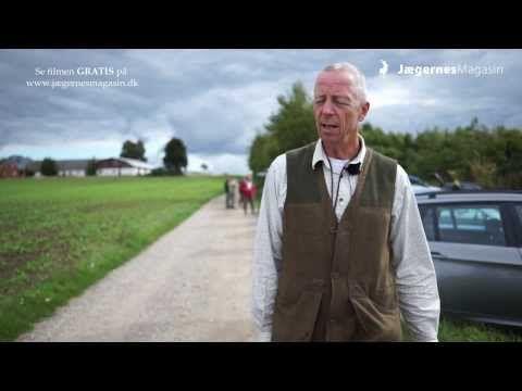 Med dette korte interview med Claus Søgaard varmer vi op til næste del om stående jagthunde, som naturligvis også er en gratis jagtfilm fra Jægernes Magasin