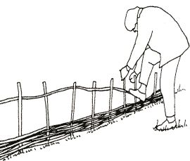 RUSTIC WATTLE WORK Woven hurdle fencing is familiar to all gardeners. The techniques used to make these have long been a basic skill of gardeners and countrymen who used wattle work much as we would use plywood or MDF today. This factsheet describes how anyone can use wattlework in the garden to create a range of interesting feature including raised beds
