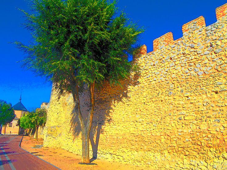 Muralla y Ermita de la Soterraña