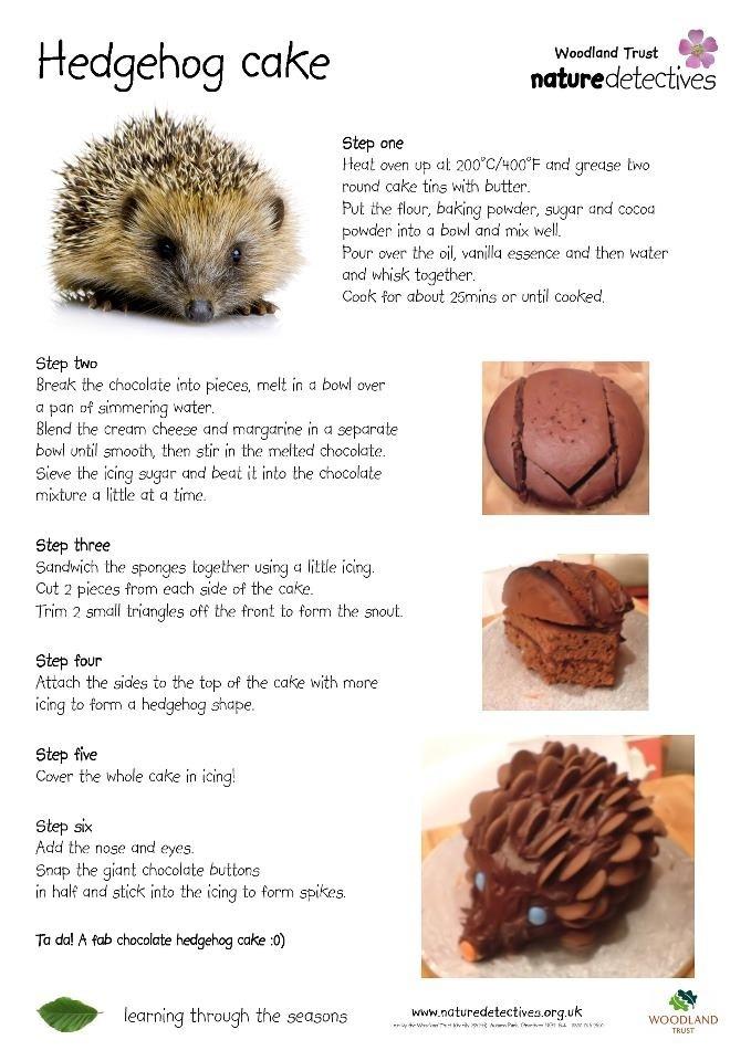How To Catch A Hedgehog