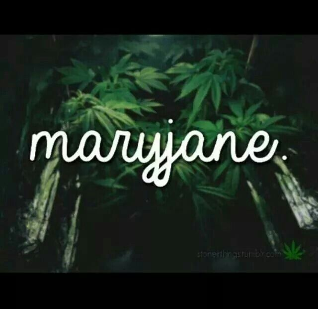 Stoner Friendship Quotes: 86 Best Ideas About Stoner Quotes On Pinterest