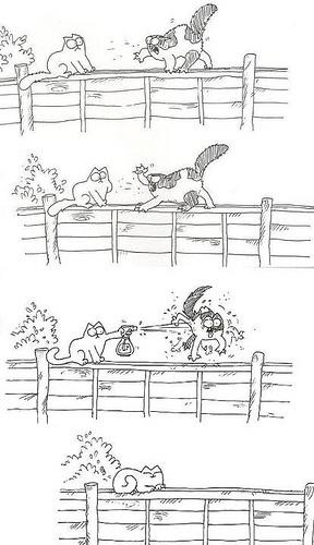 #simonscat #cats #comic http://www.openroadmedia.com/simons-cat-in-kitten-chaos