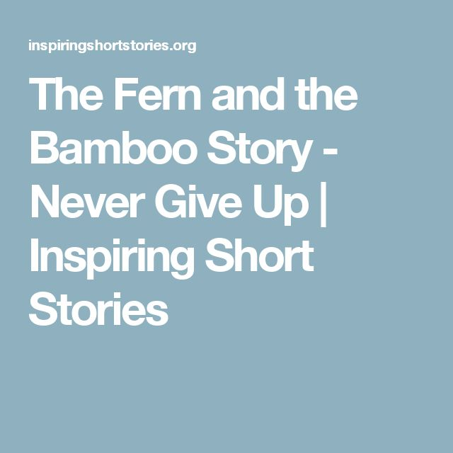 The Fern and the Bamboo Story - Never Give Up | Inspiring Short Stories