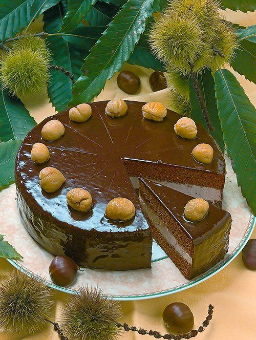 Schokolade-Maronitorte