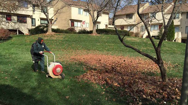 Lederlandscape Inc. provides professional Lawn Mowing Services and all Landscaping Services at most affordable prices in Hoffman Estates and other NW Chicago Suburb areas. For more assistance please give us a call on 847-870-0287.