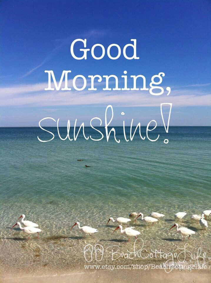 Good Morning Sunshine Lyric : Best good morning sunshine images on pinterest