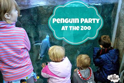 Best Birthdays: Real Party: Penguin Party at the Zoo