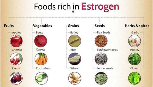 Foods High in Estrogen for Balanced Hormones In this article we will discuss different foods high in estrogen for balanced hormones. Estrogen is a group of hormones, which helps in the growth and development of the female reproductive system. Estrogen is also known as a sex hormone. Estrogen is created by the adrenal glands and fat cells.... #BalanceHormones, #Foods, #FoodsHighInEstrogenForBalancedHormones, #GetRidOfLowEstrogenLevel, #GetRidOfLowEstrogenLevelFast, #GetRidOf