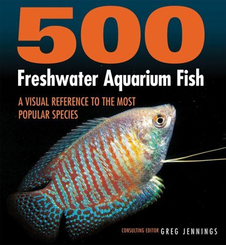 Types of freshwater aquarium fish pictures freshwater Types of fish aquarium