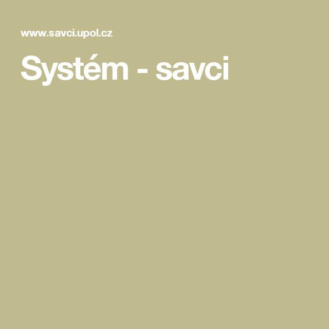 Systém - savci