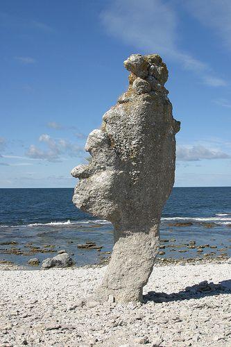 En riktigt praktexemplar av en gotländsk rauk! Gotland