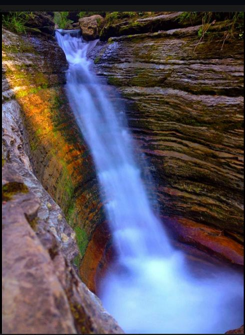 devil's bathtub, spearfish canyon, black hills, south dakota