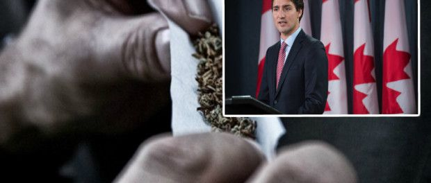 Cost Of Marijuana In Canada Announced By PM Justin Trudeau
