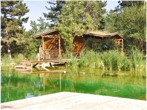 Making A Natural Swimming Pool Biotop ökosiedlung Ga
